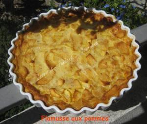 Flamusse aux pommes IMG_5342_33004