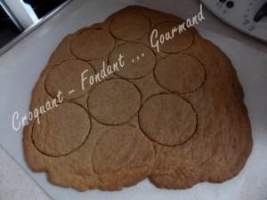 Graham biscuits DSCN2952_32704