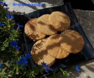 Graham biscuits DSCN2959_32711