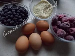 Moelleux aux fruits rouges -DSCN3052_32804