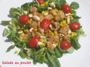 Salade au poulet IMG_5591_33692