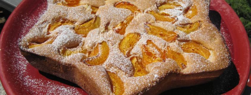 Biscuit léger aux abricots IMG_5885_34676