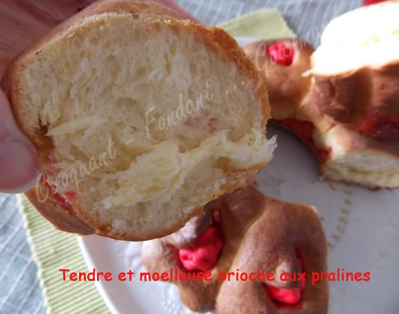 Tendre et moelleuse brioche aux pralines DSCN0669_30207