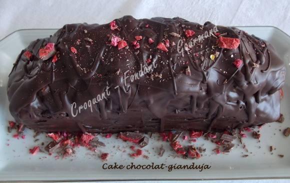 Cake chocolat-gianduja DSCN7515