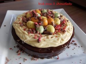 Nid aux 3 chocolats DSCN7400