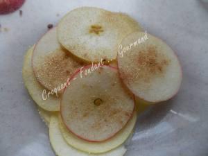 Pommes séchées Actifry DSCN6872