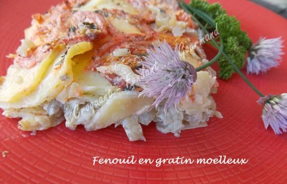 Fenouil en gratin moelleux DSCN7974