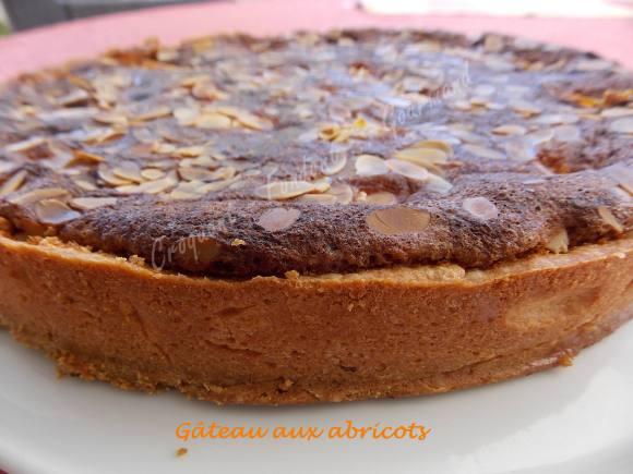 Gâteau aux abricots DSCN8945