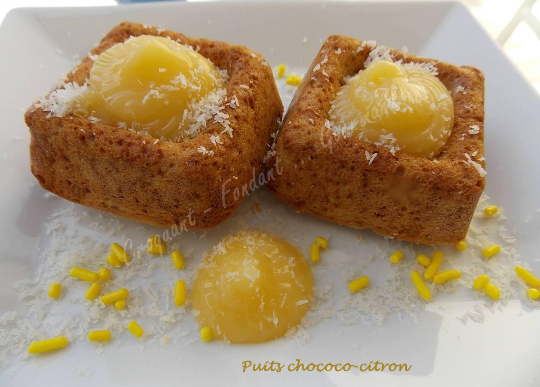 Puits chococo-citron ou fleur coco DSCN0238