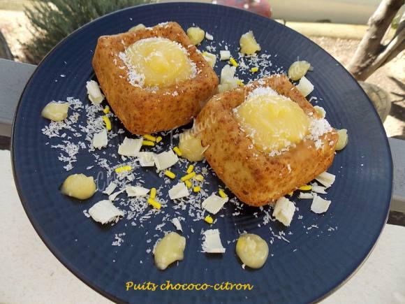 Puits chococo-citron ou fleur coco DSCN0239
