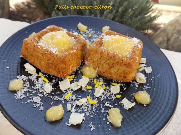 Puits chococo-citron ou fleur coco DSCN0240