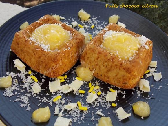 Puits chococo-citron ou fleur coco DSCN0242
