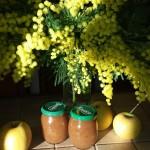 confiture de noël aux pommes à vous de jouer tamy 28confiture pomme épices