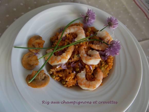 Riz aux champignons et crevettes DSCN4226