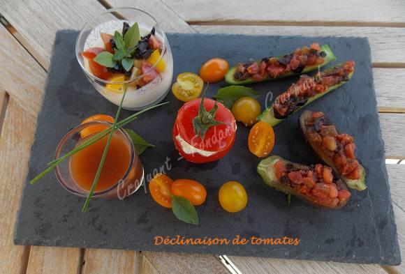 Déclinaison de tomates DSCN5290