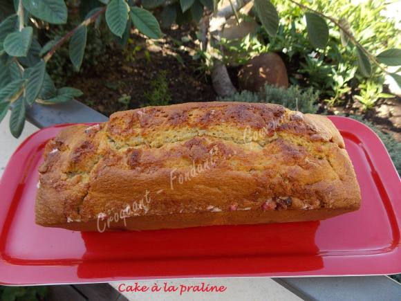 Cake à la praline DSCN5794