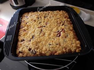 Crumb cake rhubarbe-griottes DSCN5949