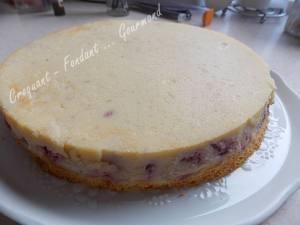 Gâteau magique framboise DSCN0372