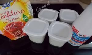 Glace au yaourt DSCN6024