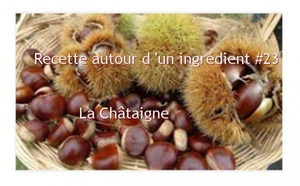 la-chataigne-recettes-autour-dun-ingredient-23-ob_d597ee_marron