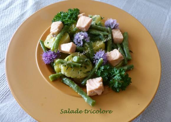 Salade tricolore P1030829