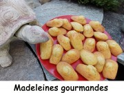 Madeleines gourmandes Index DSCN8789