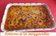 Potiron à la mozzarella Index DSCN6621