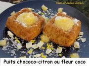 Puits chococo-citron ou fleur coco Index DSCN0242