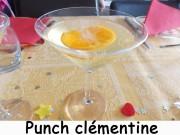Punch clémentine Index DSCN1882