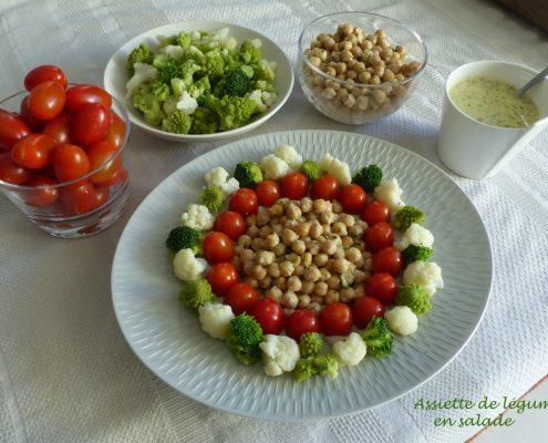 Assiette de légumes en salade P1080432 R