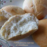 Petits pains express et moelleux P1100322 R