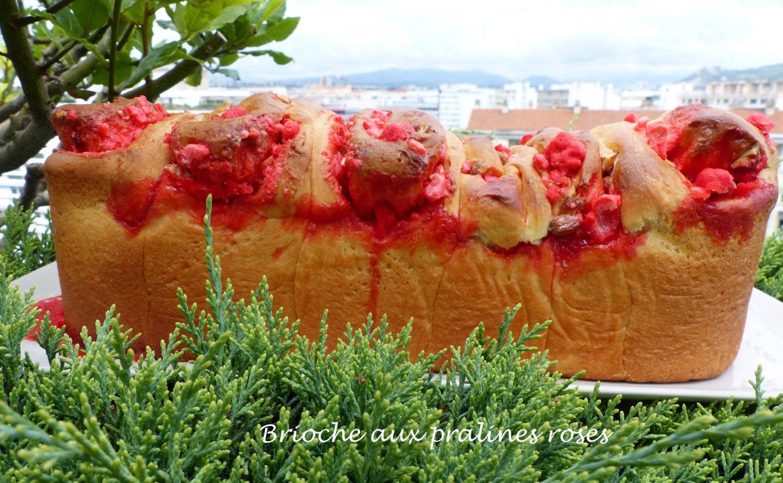 Brioche aux pralines roses P1110135 R