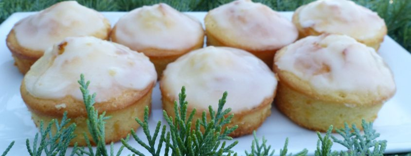 Mini gâteaux nantais P1120284 R