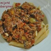 Bœuf mijoté aux aubergines R DSC_0461_18956 (Copy)