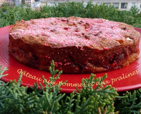 Gâteau aux pommes et aux pralines P1130950 R