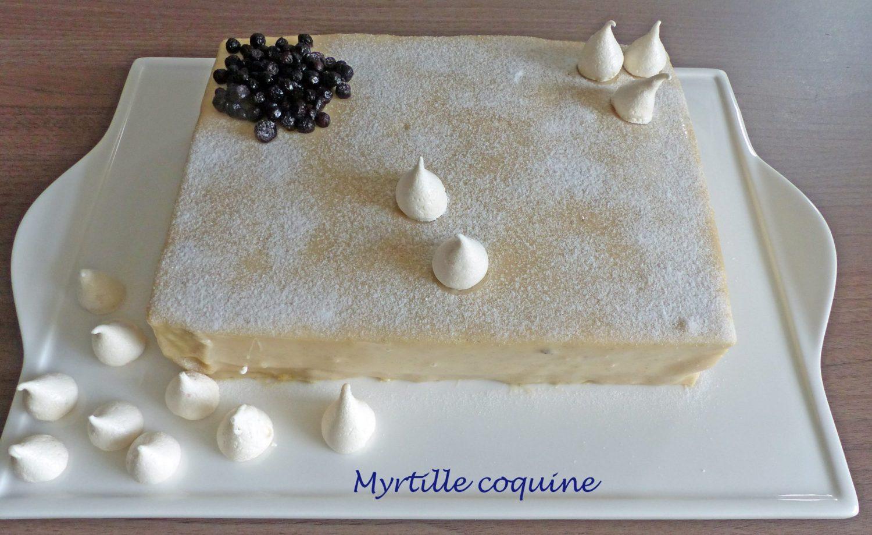 Myrtille coquine P1080128 R