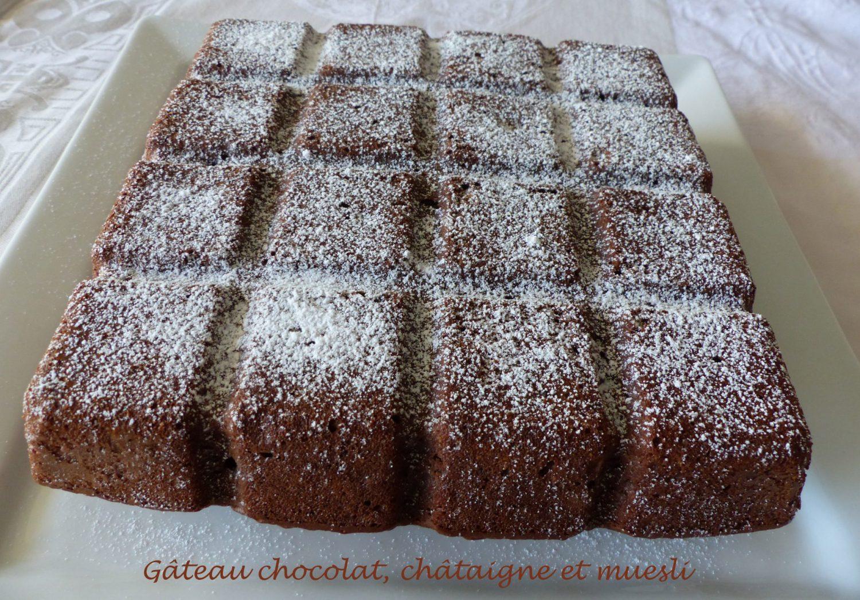 Gâteau chocolat, châtaigne et muesli P1110545 R