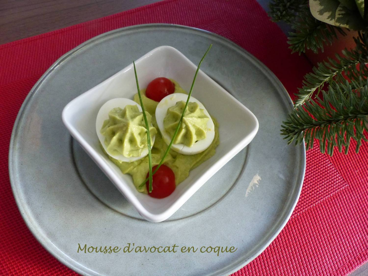 Mousse d'avocat en coque P1220098 R