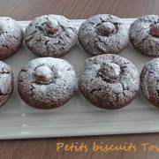 Petits biscuits Townies P1220523 R