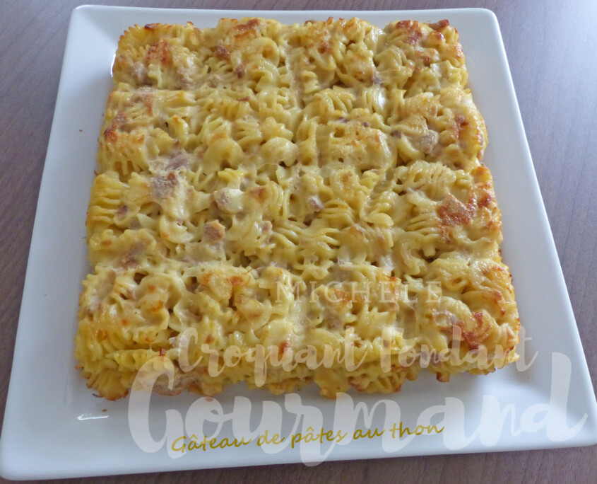 Gâteau de pâtes au thon P1260677 R