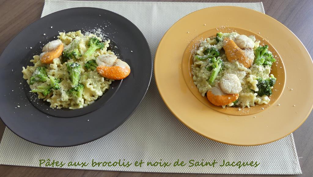 Pâtes aux brocolis et noix de Saint Jacques P1000819 R (Copy)