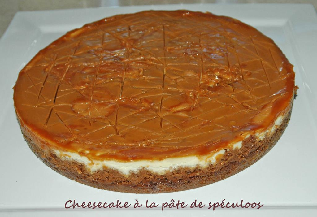 Cheesecake-à-la-pâte-de-speculoos-DSC_3717_1197 R (Copy)