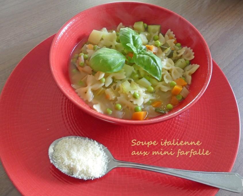 Soupe italienne aux mini farfalle P1010602 R (Copy)