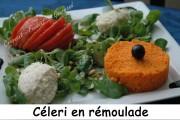 fenouil-céleri-carottes Index- aout 2009 182 copie