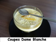 Coupes Dame Blanche Index P1010566