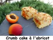 Crumb cake à l'abricot Index P1040134