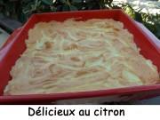 Délicieux au citron Index DSCN5878