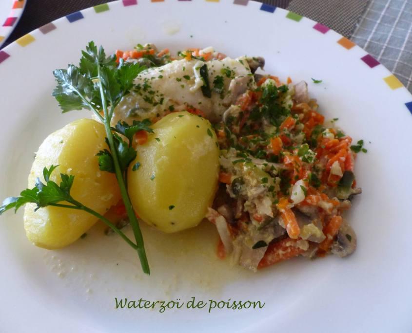 Waterzoï de poisson P1160967 R