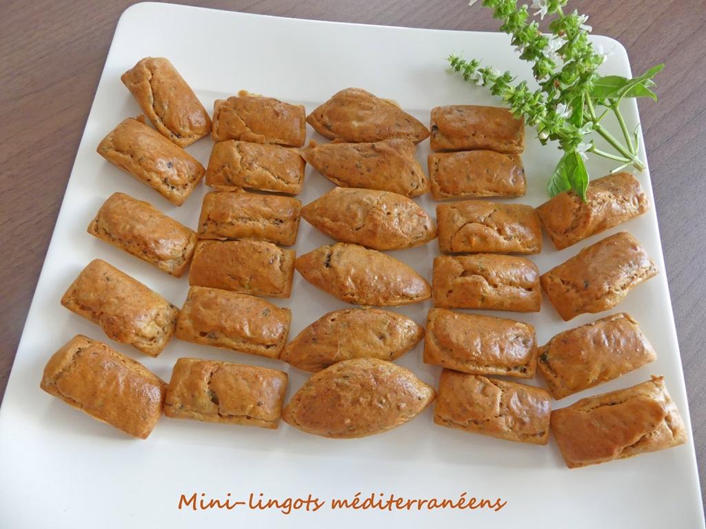 Mini-lingots méditerranéens P1020477 R (Copy)