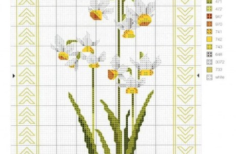 Daffodils to Cross Stitch